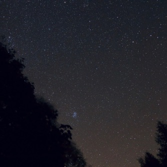 The Pleiades rising over the trees near Achnasheen
