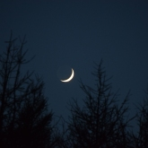Thin waxing crescent Moon above Abriachan Forest